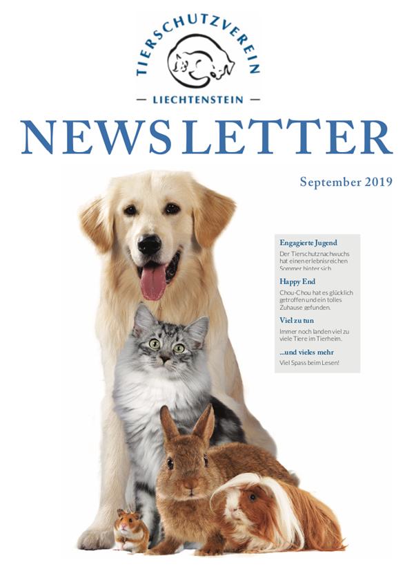Newsletter - Ausgabe September 19