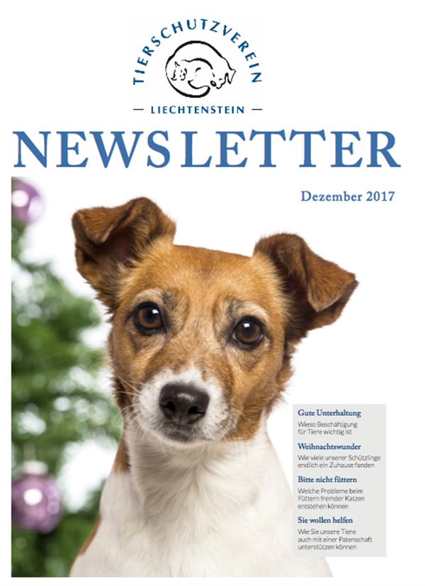 Newsletter Ausgabe Dezember 17