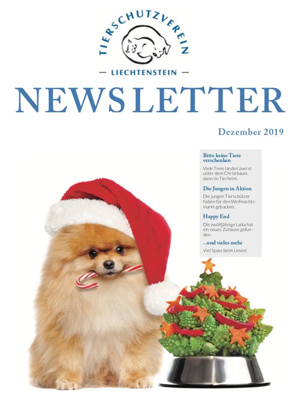 Newsletter - Ausgabe Dezember 19