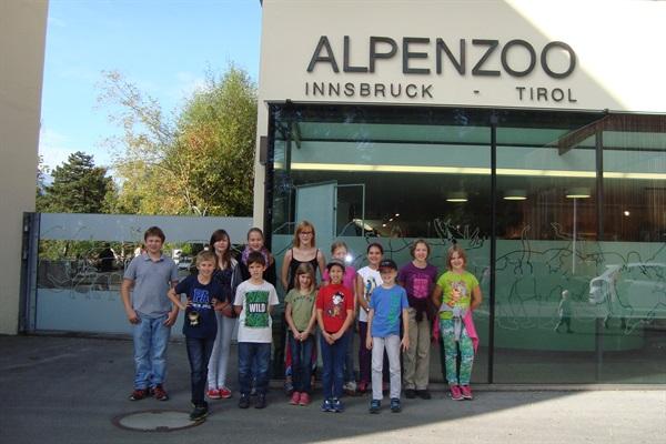 Alpine Tierwelt