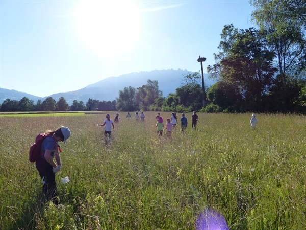 Schutz der Rehkitze, Feldhasen und Bodenbrüter vor dem Mähen
