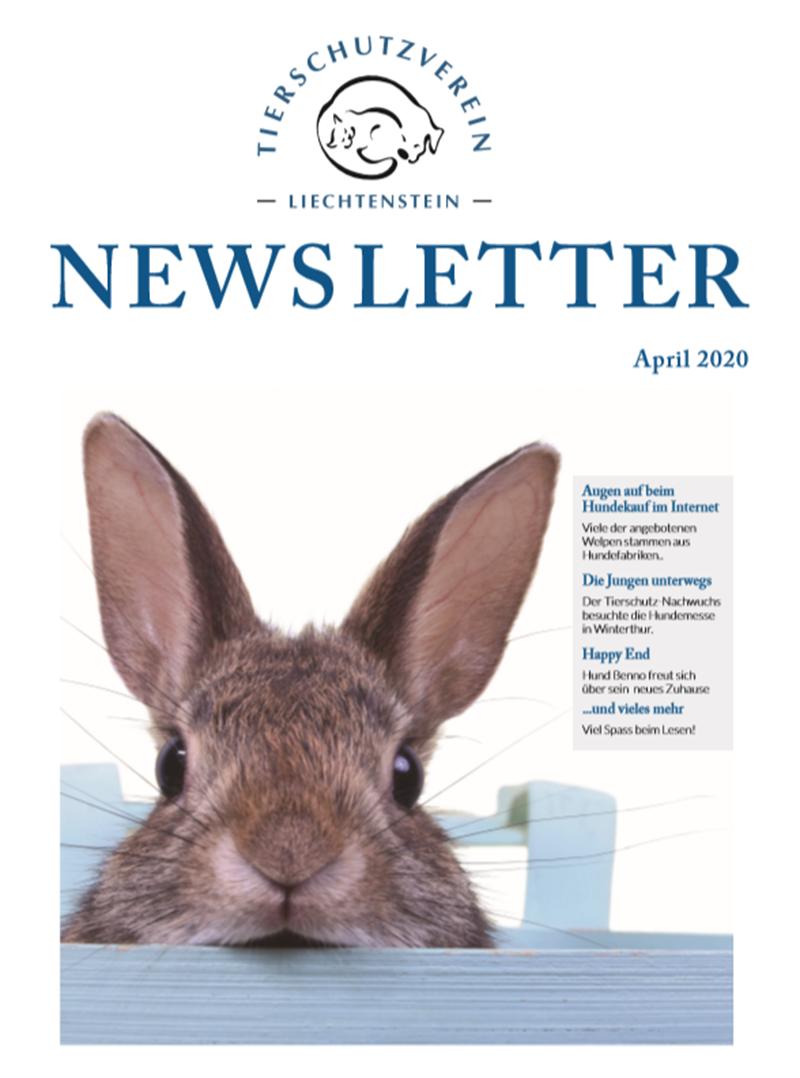 Newsletter - April 20