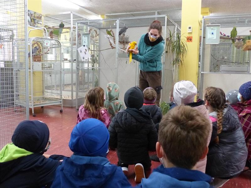 Die Kinder- und Jugendtierschutzgruppe besucht die Auffangstation für Papageien und Sittiche