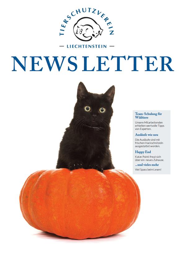Newsletter - Ausgabe Oktober 2020